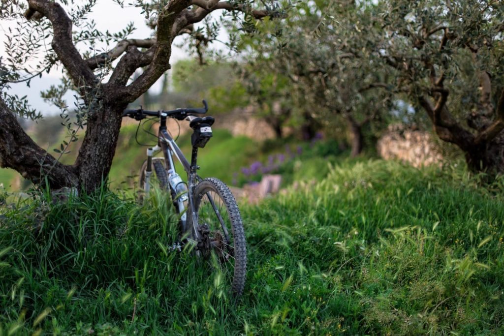 Cycling around the Son Felip estate and Menorca