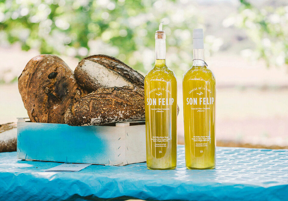 Organic olive oil from Son Felip